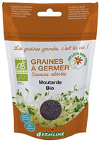 Graines de moutarde