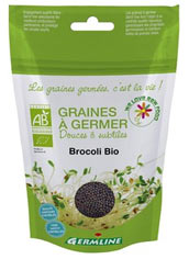 Graines à germer de brocoli